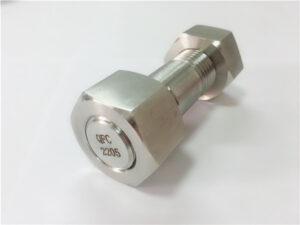 Nr. 75-Bolț cu duplex de oțel inoxidabil 2205 duplex de înaltă calitate